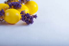 Oeufs de pâques avec des fleurs sur un fond blanc Photos libres de droits