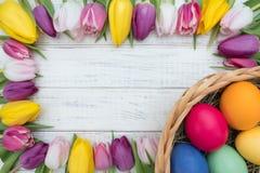Oeufs de pâques avec des tulipes Photos libres de droits