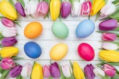 Oeufs de pâques avec des tulipes Photographie stock libre de droits