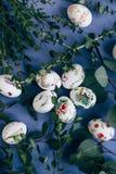 Oeufs de pâques avec l'ornement floral sur la table bleue images libres de droits