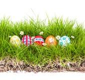 Oeufs de pâques avec la fleur sur l'herbe verte fraîche Photographie stock