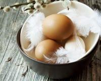 Oeufs de pâques avec les plumes sensibles dans des cuvettes Image libre de droits
