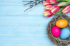 Oeufs de pâques avec les tulipes et le saule Photographie stock libre de droits