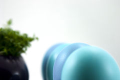 Oeufs de pâques bleus avec le cresson frais Image stock
