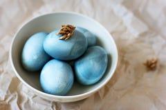Oeufs de pâques bleus dans une plaque Photographie stock