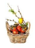 Oeufs de pâques, brindilles de saule et nid avec des poussins Photos stock