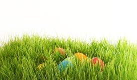 Oeufs de pâques cachés dans des lames d'herbe verte d'herbe Image libre de droits