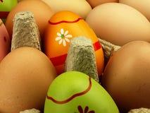 Oeufs de pâques colorés à la société des oeufs ordinaires Photos stock