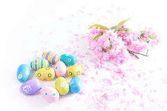 Oeufs de pâques colorés avec les fleurs roses sur le fond blanc Images stock