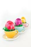 Oeufs de pâques colorés dans de petites cuvettes dans une ligne Images libres de droits