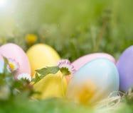 Oeufs de pâques colorés dans le jardin Image libre de droits