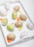 Oeufs de pâques colorés dans le plateau en bois sur un fond blanc Pâques Photo stock