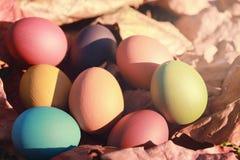 Oeufs de pâques colorés en nature Photo stock