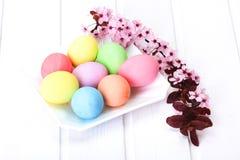 Oeufs de pâques colorés par pastel Photo stock