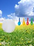 Oeufs de pâques colorés sur le pré de source Photos libres de droits