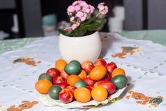 Oeufs de pâques de coloration en colorants naturels photo libre de droits
