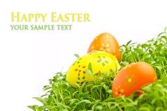 Oeufs de pâques décoratifs Photographie stock