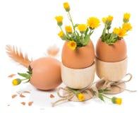 Oeufs de pâques dans des coquetiers Images stock