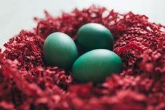 Oeufs de pâques dans l'emboîtement Images libres de droits