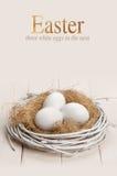 Oeufs de pâques dans l'emboîtement Photos libres de droits