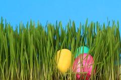 Oeufs de pâques dans l'herbe Image libre de droits