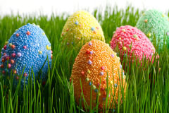 Oeufs de pâques dans l'herbe Photos libres de droits