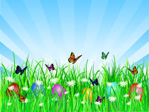 Oeufs de pâques dans l'herbe Photo libre de droits