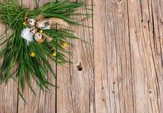 Oeufs de pâques dans l'herbe verte, vue supérieure Image libre de droits