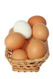 Oeufs de pâques dans le panier. photographie stock libre de droits