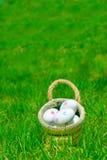 Oeufs de pâques dans le panier sur l'herbe verte Photographie stock