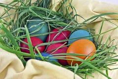 Oeufs de pâques dans un emboîtement Photo libre de droits