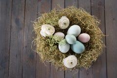 Oeufs de pâques dans un nid Photo libre de droits