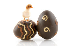 Oeufs de pâques de chocolat image libre de droits