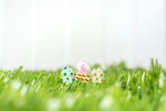 Oeufs de pâques en verre sur le champ d'herbe verte à la barrière blanche dans backyar Photos stock