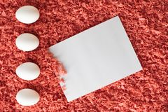 Oeufs de pâques et feuille de papier blanche sur un fond de corail image stock