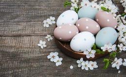 Oeufs de pâques et fleur de ressort Photo libre de droits
