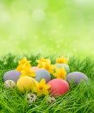 Oeufs de pâques et fleurs de jonquilles dans l'herbe Photos stock