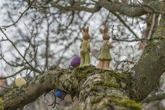 Oeufs de pâques et lapin de Pâques colorés sur un arbre images libres de droits