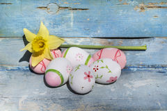 Oeufs de pâques et narcisse roses sur un fond en bois bleu Photographie stock libre de droits
