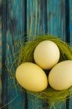 Oeufs de pâques jaunes images libres de droits