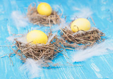 Oeufs de pâques jaunes dans le nid Photos libres de droits
