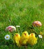 Oeufs de pâques peints colorés sur une herbe verte Images libres de droits