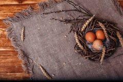 Oeufs de pâques peints images stock