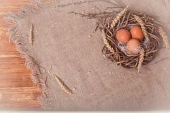 Oeufs de pâques peints photo libre de droits