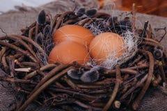 Oeufs de pâques peints photo stock