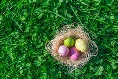 Oeufs de pâques pointillés colorés dans un nid de paille sur l'herbe verte et les trèfles frais image stock