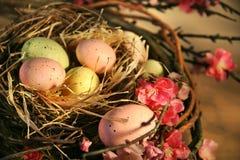 Oeufs de pâques roses et jaunes Photos libres de droits