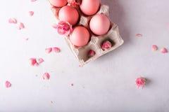 Oeufs de pâques roses sur le fond clair Copyspace Photo toujours de la vie d'un bon nombre d'oeufs de pâques roses Fond avec des  Image libre de droits