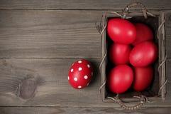 Oeufs de pâques rouges dans le panier Images stock