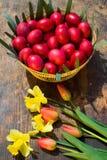 Oeufs de pâques - Roumanie Photo libre de droits